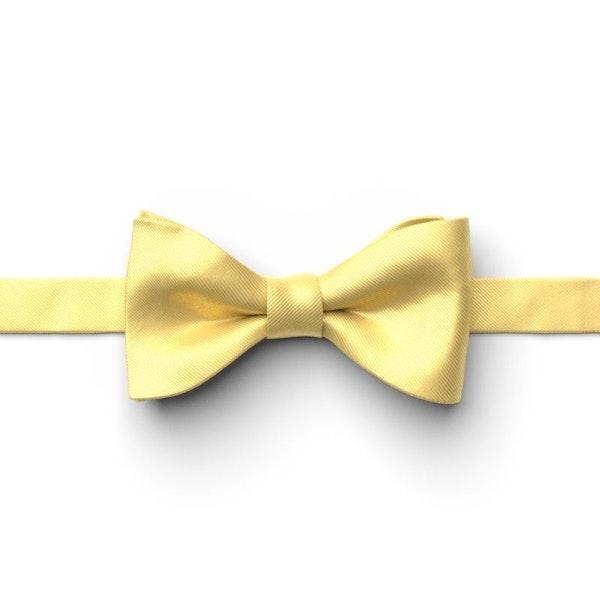 Sunbeam Pre-Tied Bow Tie