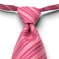 Bright Fuchsia Pre-Tied Striped Tie