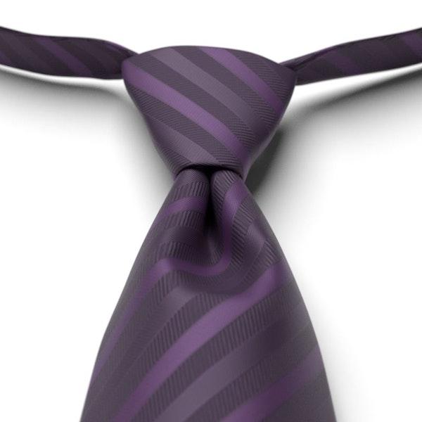 Eggplant Pre-Tie Striped Tie