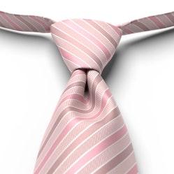 First Blush Pre-Tied Striped Tie