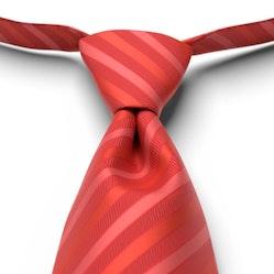 Ferrari Red Pre-Tied Striped Tie