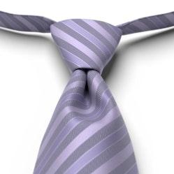 Freesia Pre-Tied Striped Tie