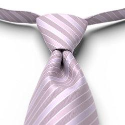 Iris Pre-Tied Striped Tie