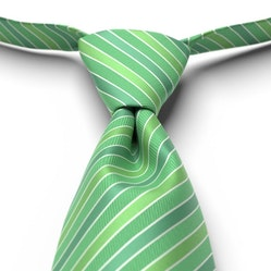 Kelly Green Pre-Tied Striped Tie