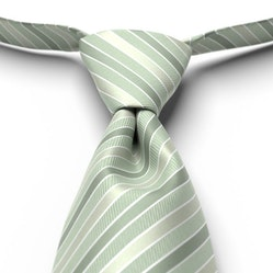 Meadow Pre-Tied Striped Tie