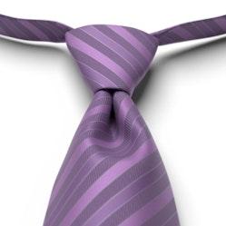 Purple Pre-Tied Striped Tie
