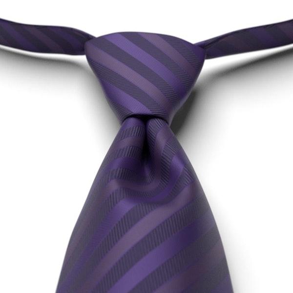Regency Striped Pre-Tied Tie