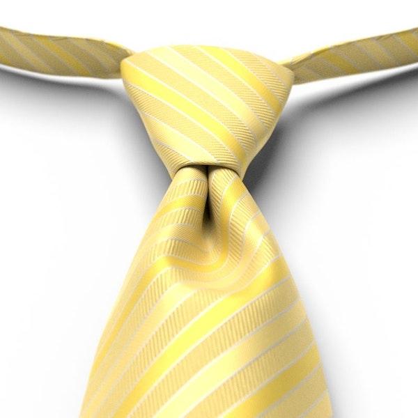 Sunbeam Pre-Tied Striped Tie