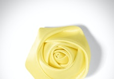 Canary Rose Lapel Pin