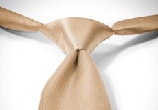 Toffee Pre-Tied Tie
